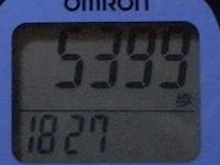 R0010993