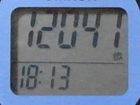 R0011039